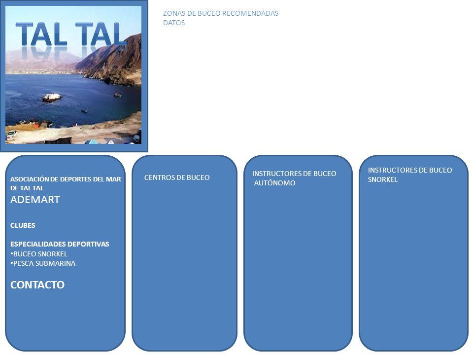TAL TAL ADEMART CONTACTO ZONAS DE BUCEO RECOMENDADAS DATOS