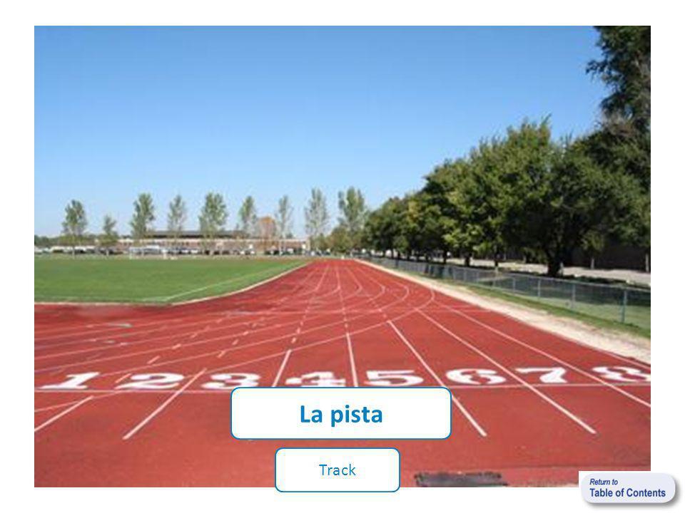 La pista Track