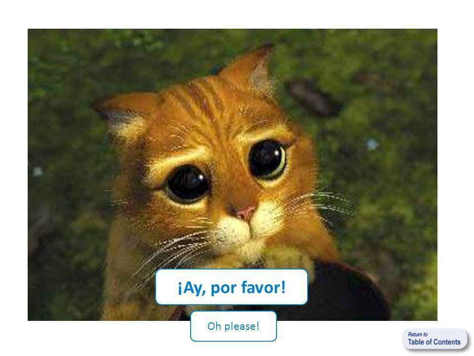 ¡Ay, por favor! Oh please!