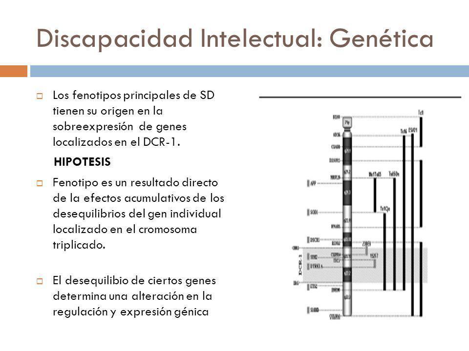 Discapacidad Intelectual: Genética