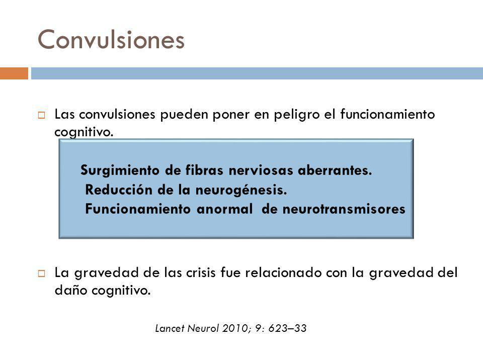 Convulsiones Las convulsiones pueden poner en peligro el funcionamiento cognitivo.