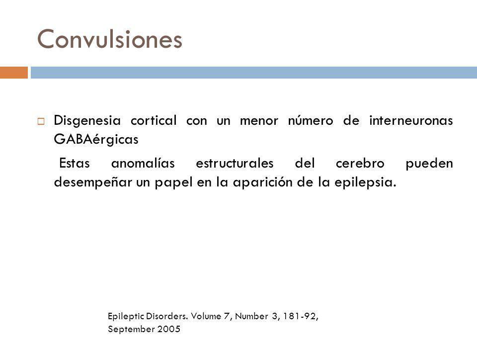 Convulsiones Disgenesia cortical con un menor número de interneuronas GABAérgicas.