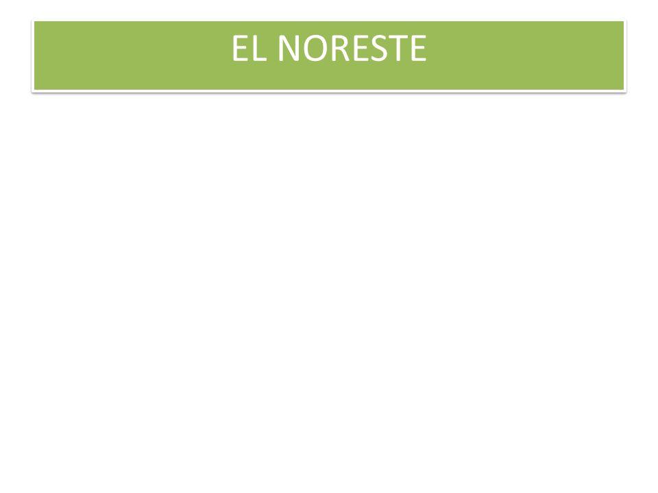 EL NORESTE