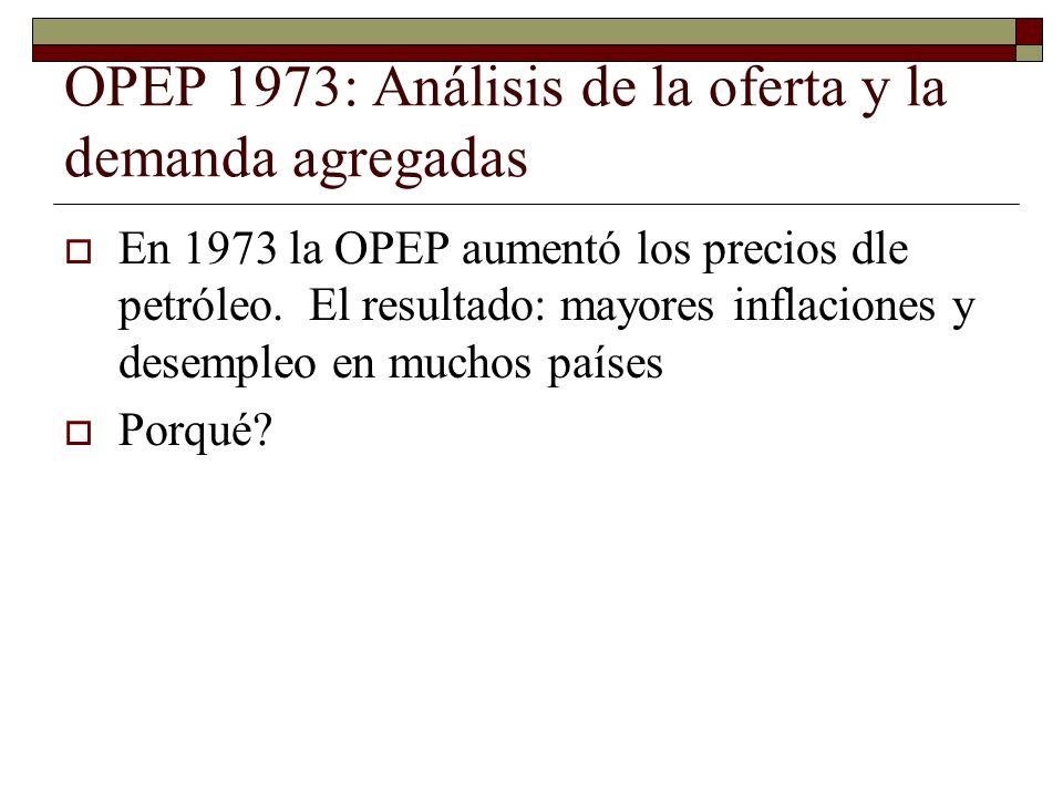 OPEP 1973: Análisis de la oferta y la demanda agregadas