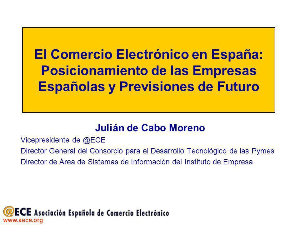El Comercio Electrónico en España: Posicionamiento de las Empresas Españolas y Previsiones de Futuro
