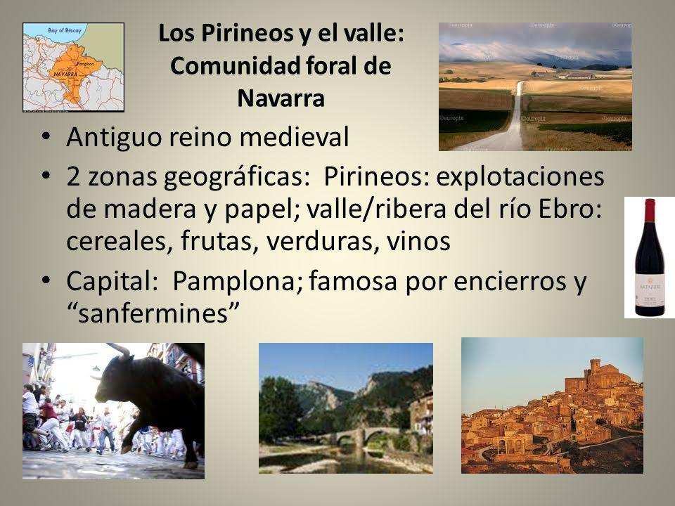 Los Pirineos y el valle: Comunidad foral de Navarra
