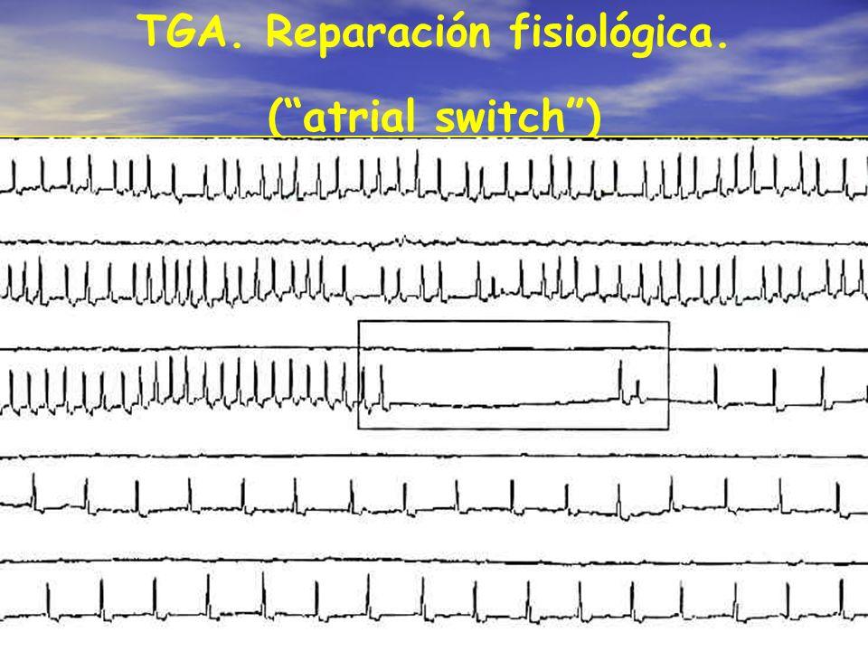 TGA. Reparación fisiológica.