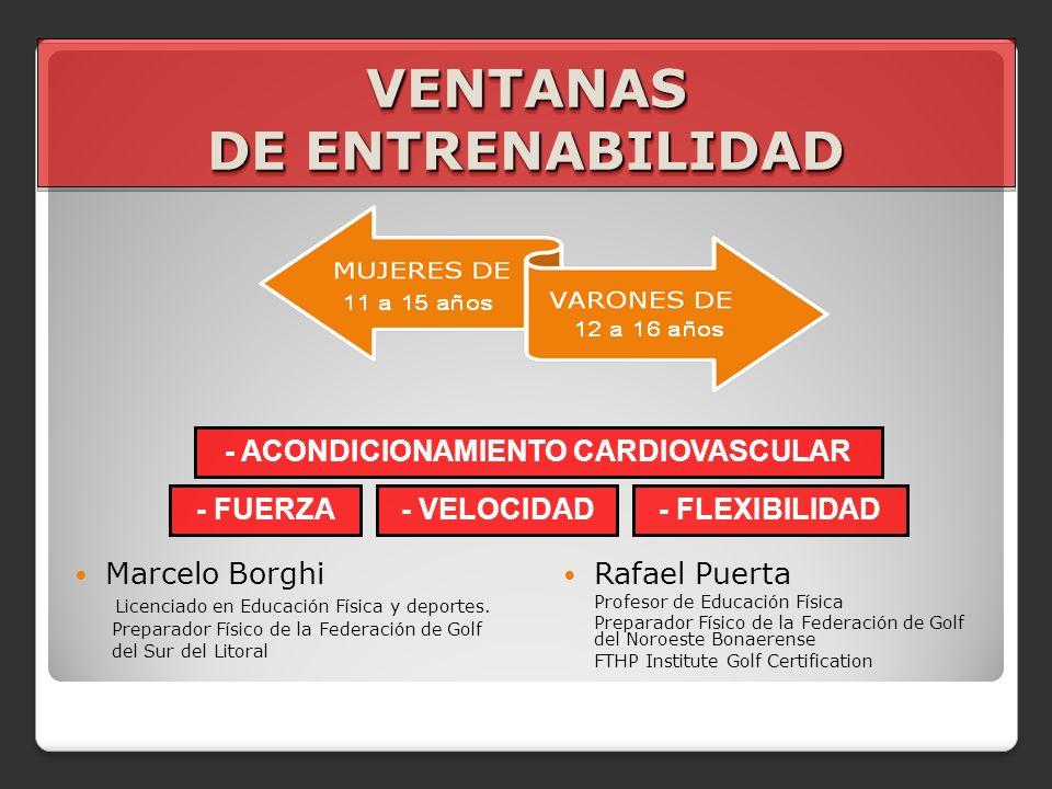 VENTANAS DE ENTRENABILIDAD