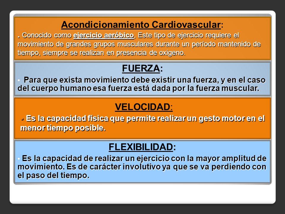 Acondicionamiento Cardiovascular: