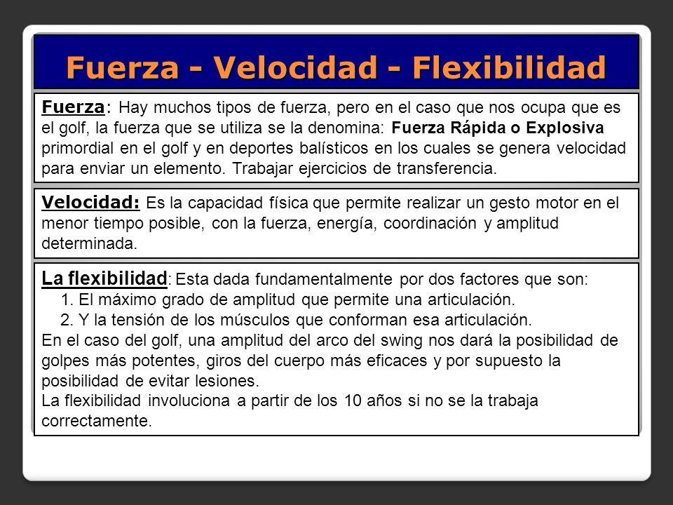 Fuerza - Velocidad - Flexibilidad