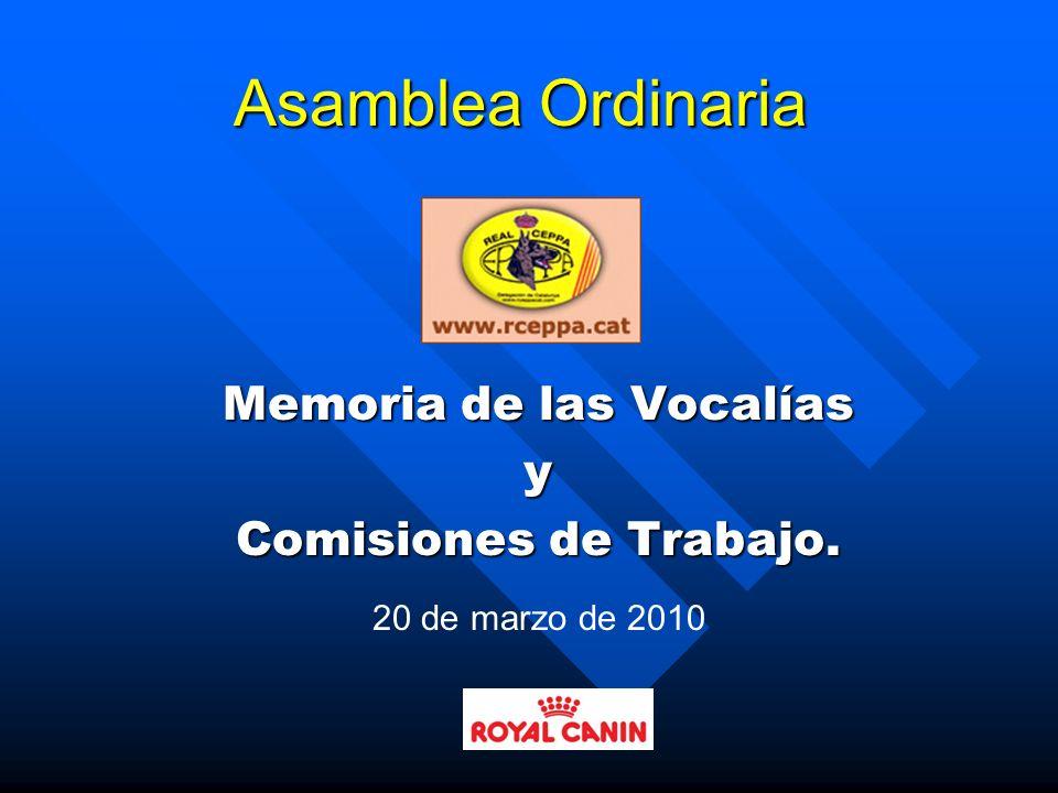 Memoria de las Vocalías y Comisiones de Trabajo.