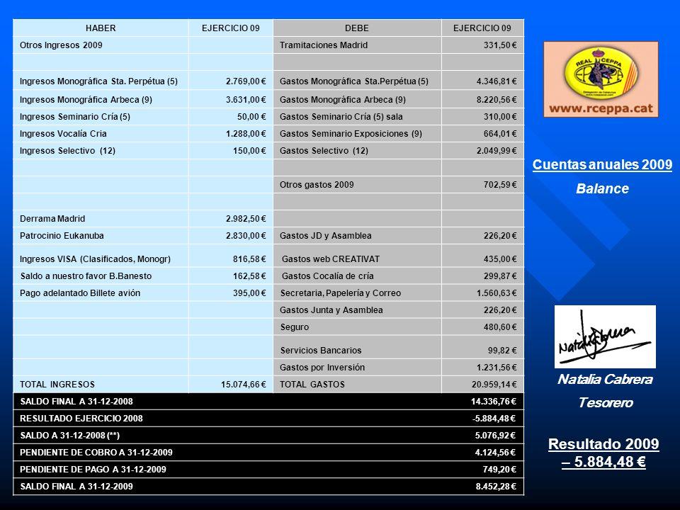 Resultado 2009 – 5.884,48 € Cuentas anuales 2009 Balance