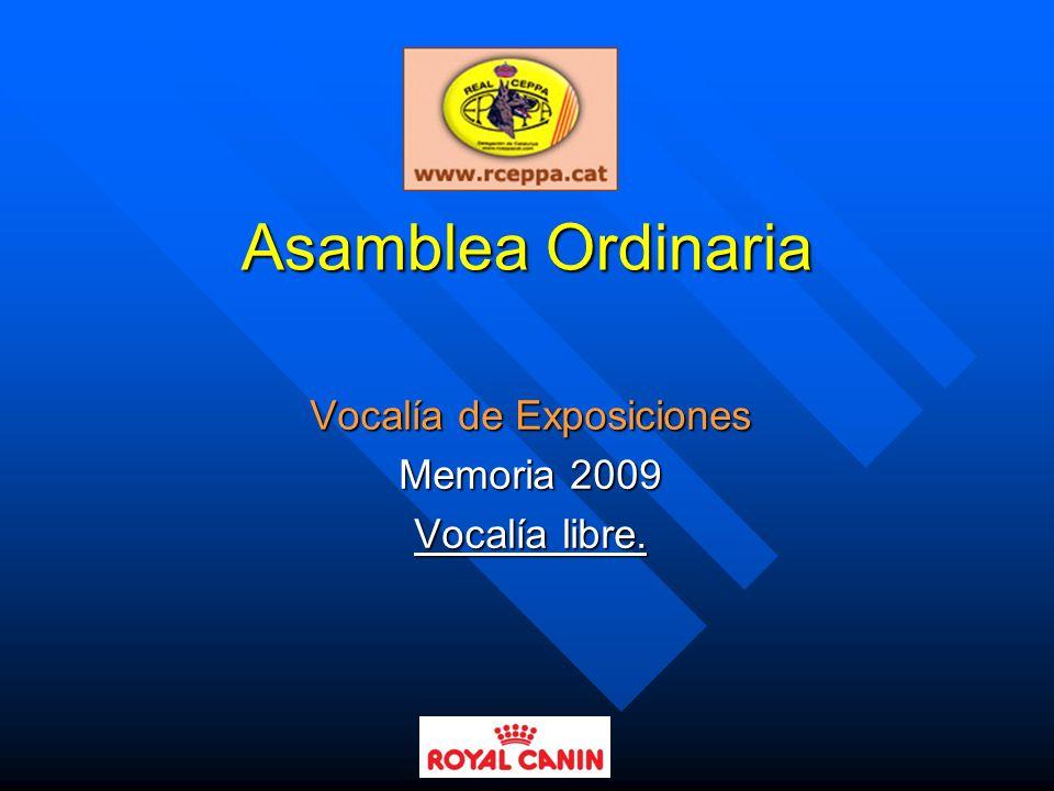 Vocalía de Exposiciones Memoria 2009 Vocalía libre.
