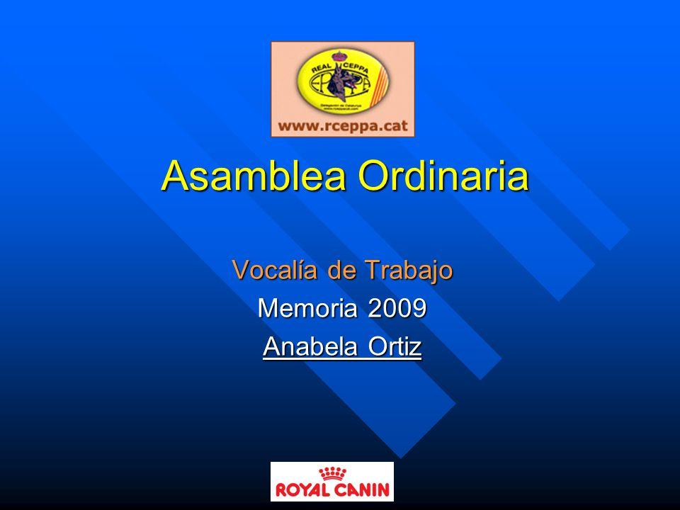 Vocalía de Trabajo Memoria 2009 Anabela Ortiz