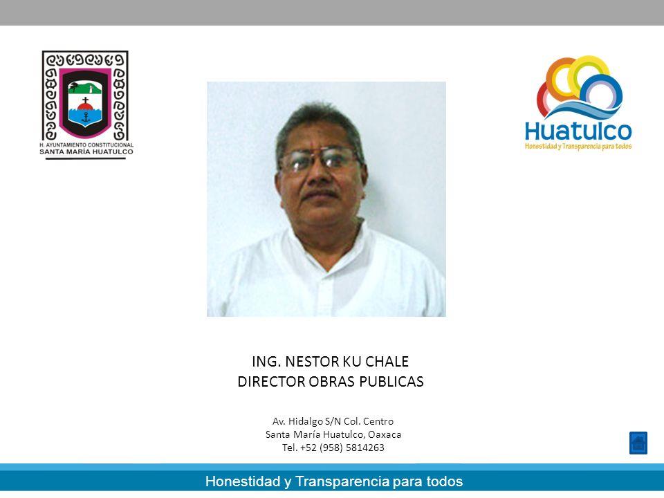 DIRECTOR OBRAS PUBLICAS