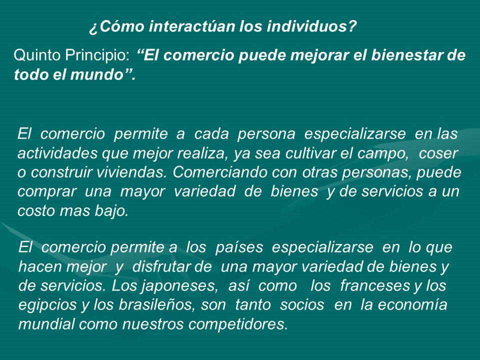 ¿Cómo interactúan los individuos