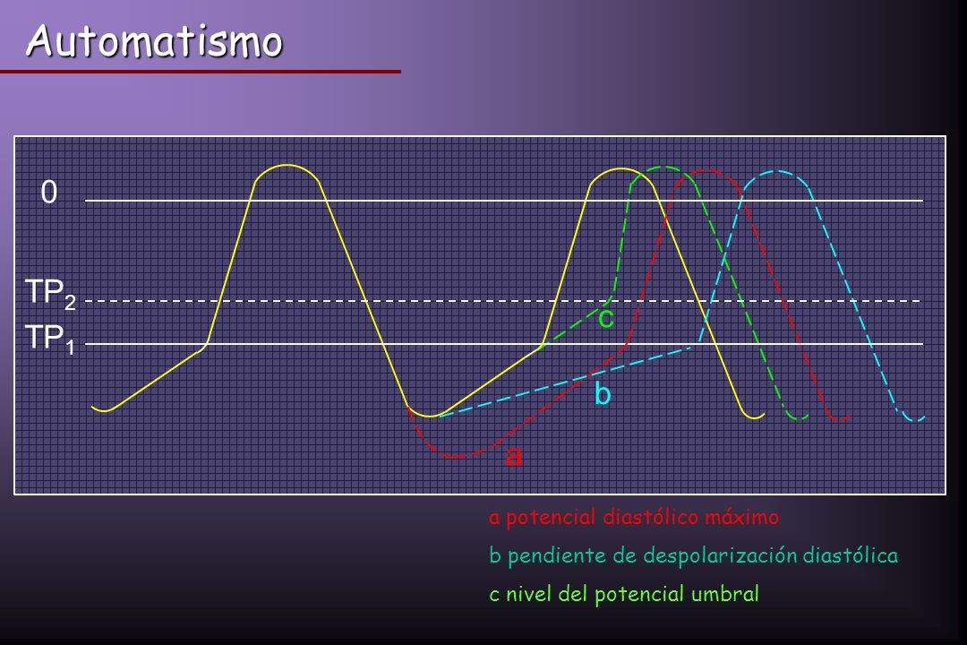 Automatismo TP2 c TP1 b a a potencial diastólico máximo