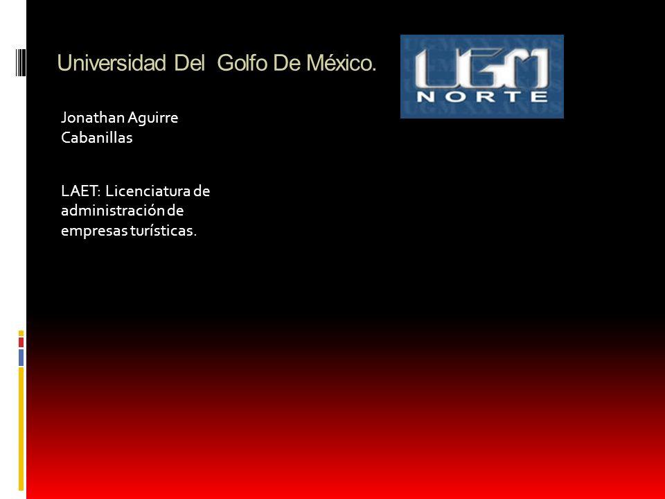 Universidad Del Golfo De México.