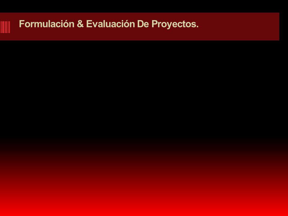 Formulación & Evaluación De Proyectos.