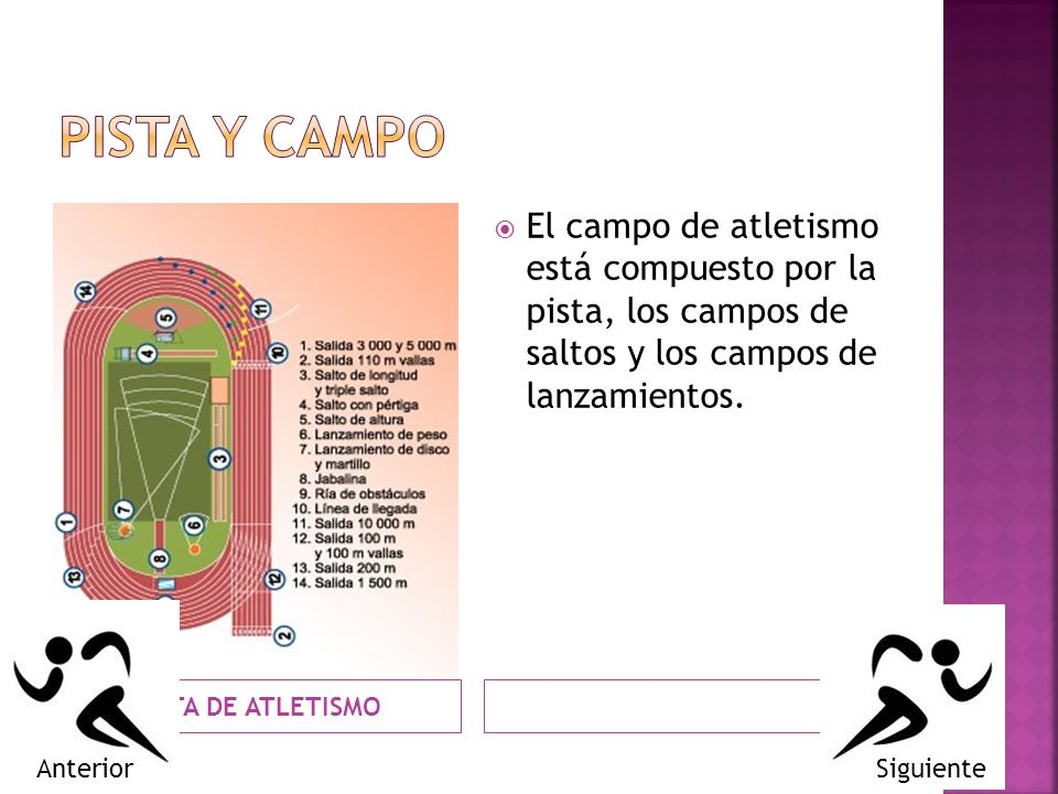 PISTA Y CAMPO El campo de atletismo está compuesto por la pista, los campos de saltos y los campos de lanzamientos.