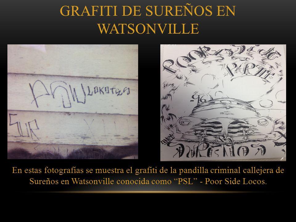 GRAFITI DE SUREÑOS EN WATSONVILLE