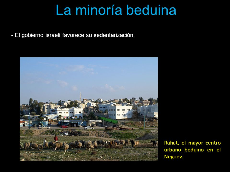 La minoría beduina El gobierno israelí favorece su sedentarización.