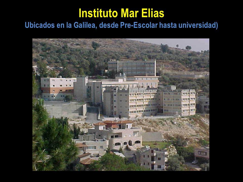 Ubicados en la Galilea, desde Pre-Escolar hasta universidad)