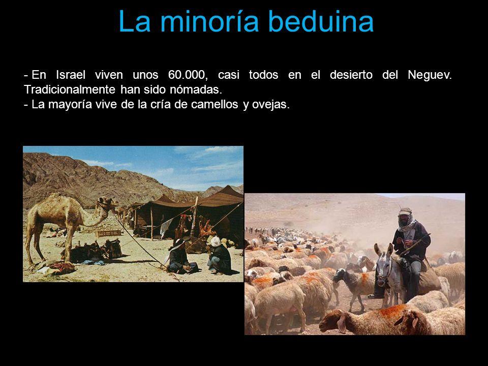 La minoría beduina En Israel viven unos 60.000, casi todos en el desierto del Neguev. Tradicionalmente han sido nómadas.