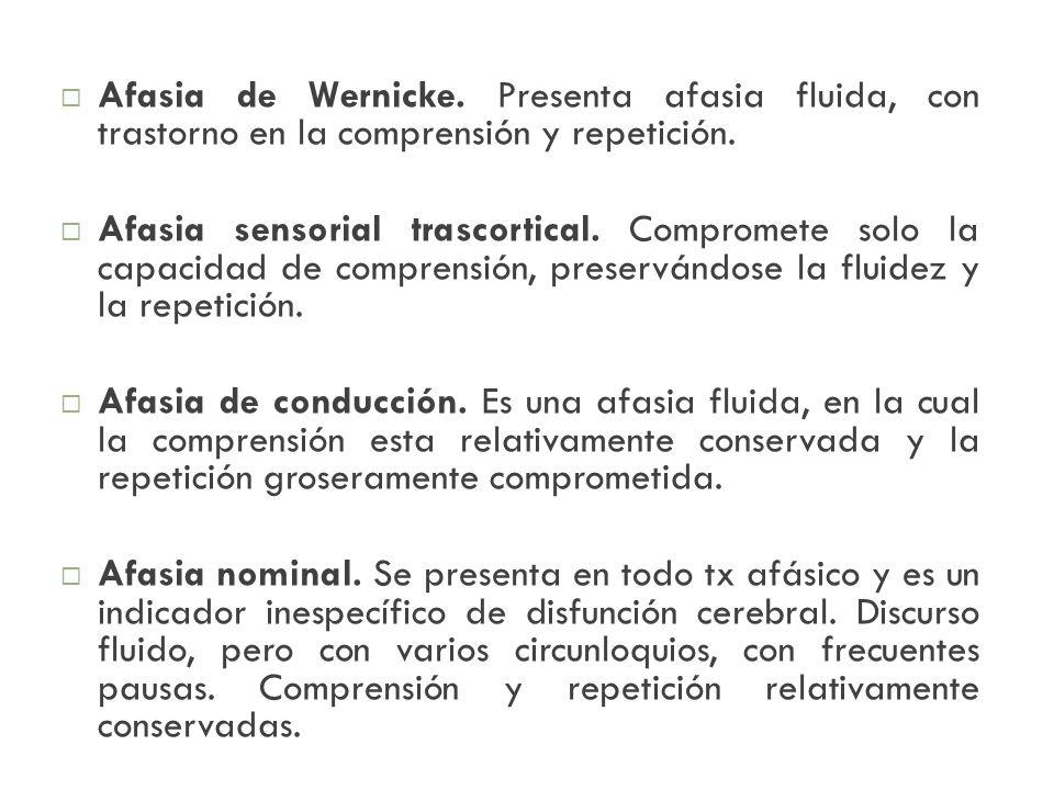 Afasia de Wernicke. Presenta afasia fluida, con trastorno en la comprensión y repetición.