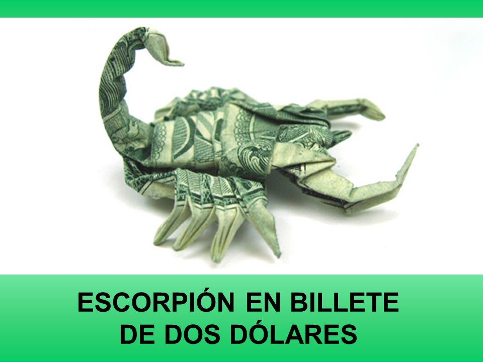 ESCORPIÓN EN BILLETE DE DOS DÓLARES