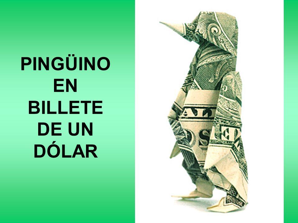 PINGÜINO EN BILLETE DE UN DÓLAR