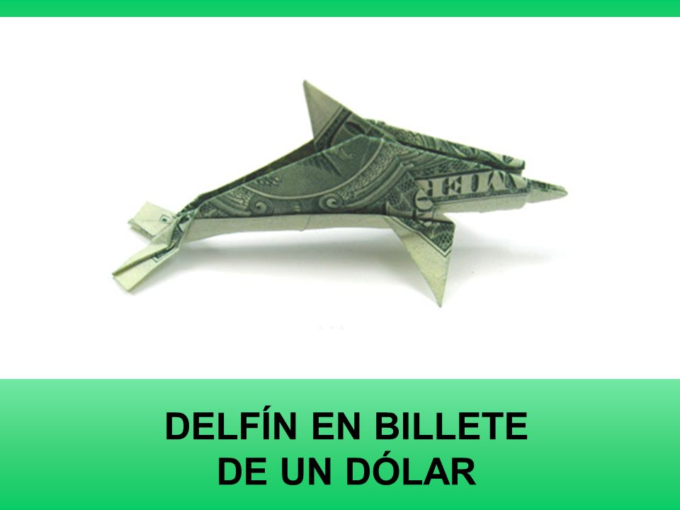 DELFÍN EN BILLETE DE UN DÓLAR