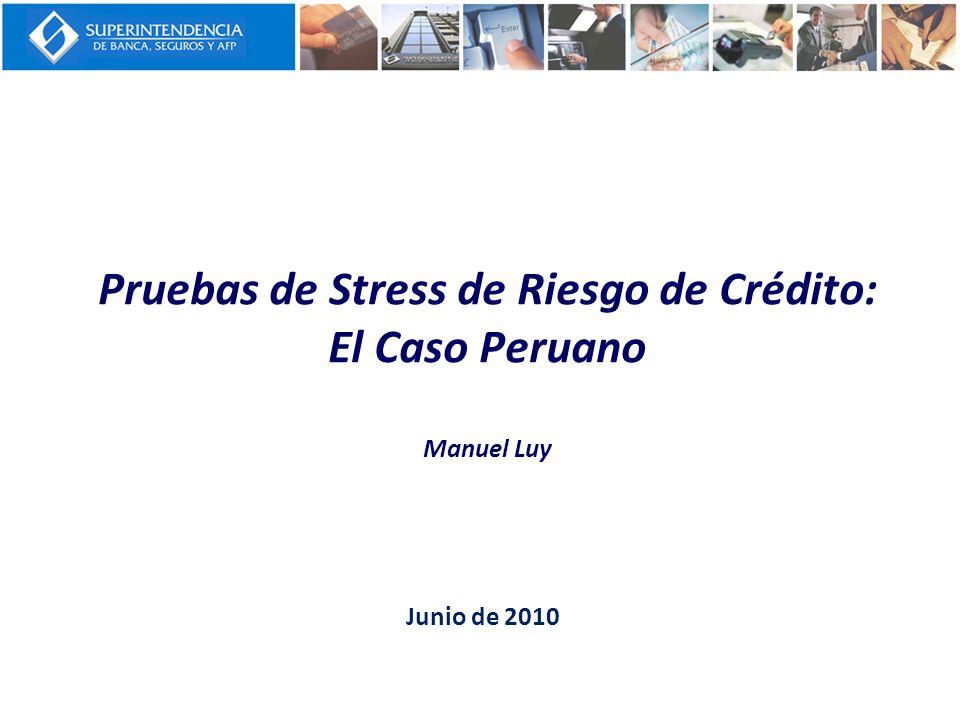 Pruebas de Stress de Riesgo de Crédito: El Caso Peruano Manuel Luy