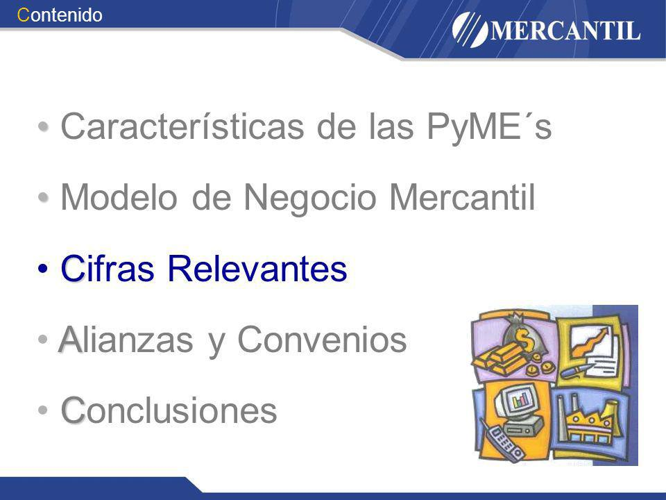 Características de las PyME´s Modelo de Negocio Mercantil