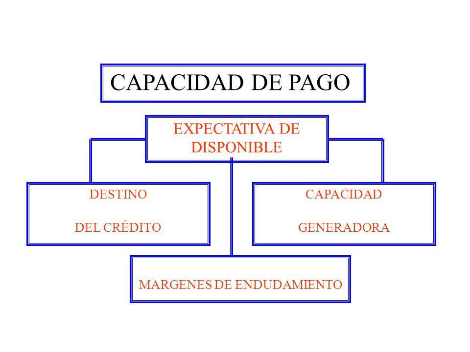 MARGENES DE ENDUDAMIENTO
