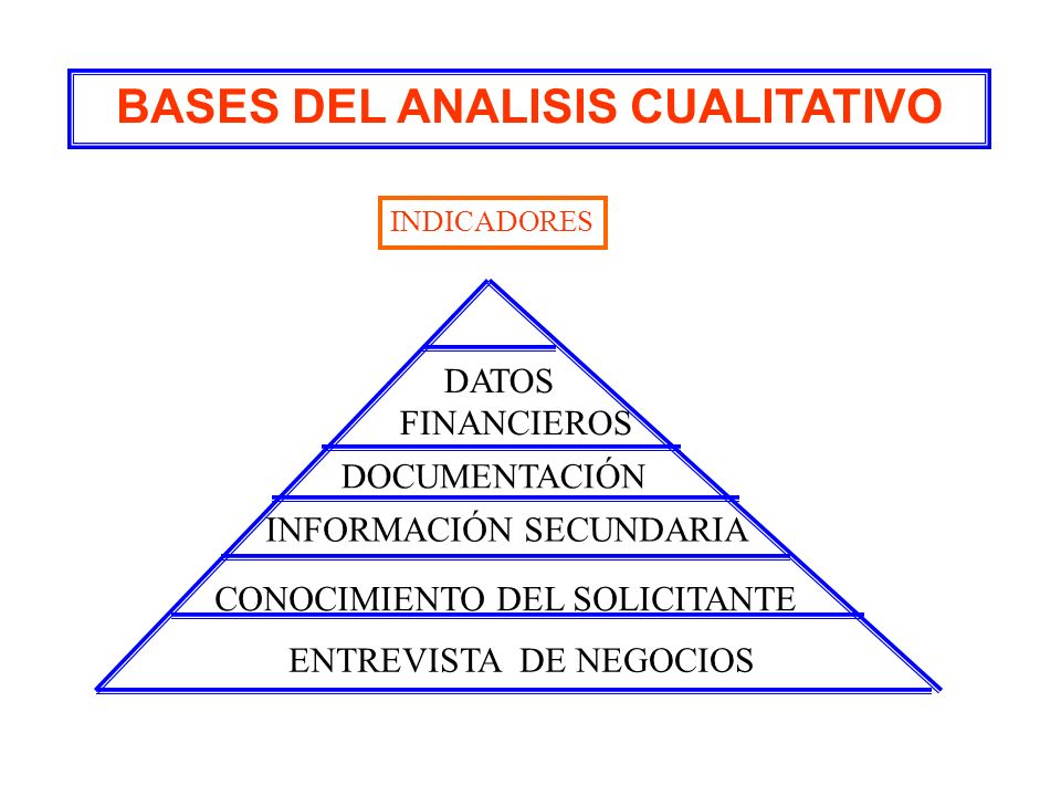 BASES DEL ANALISIS CUALITATIVO