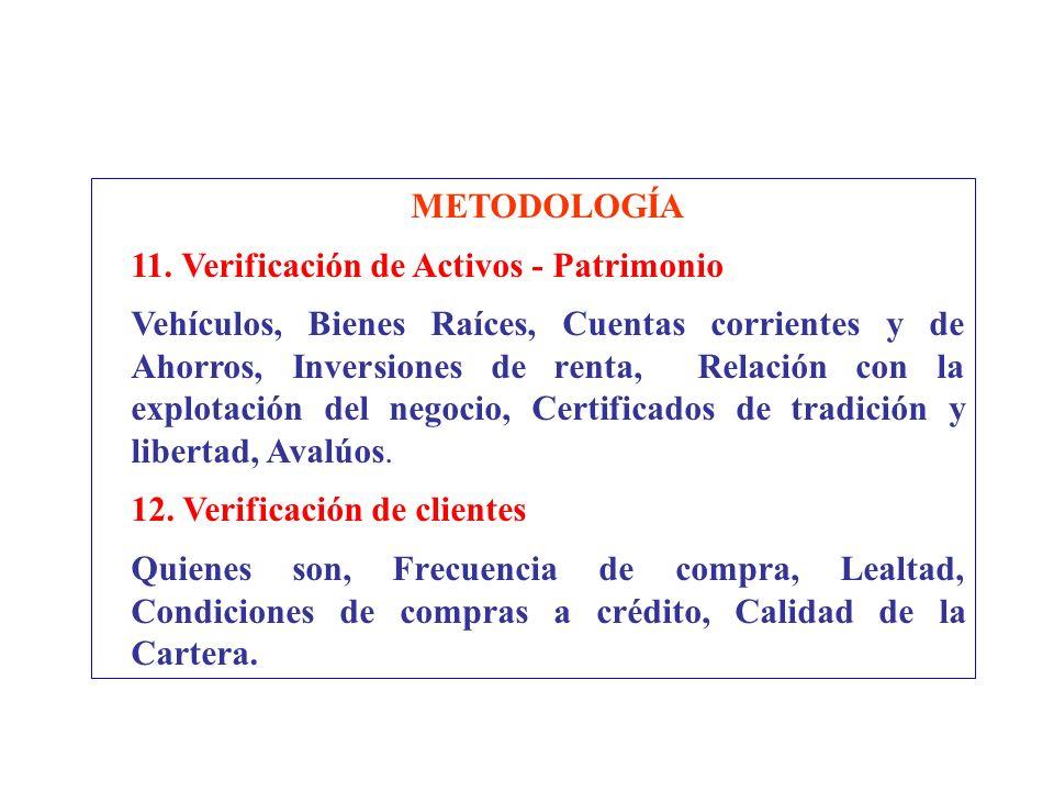 METODOLOGÍA 11. Verificación de Activos - Patrimonio.