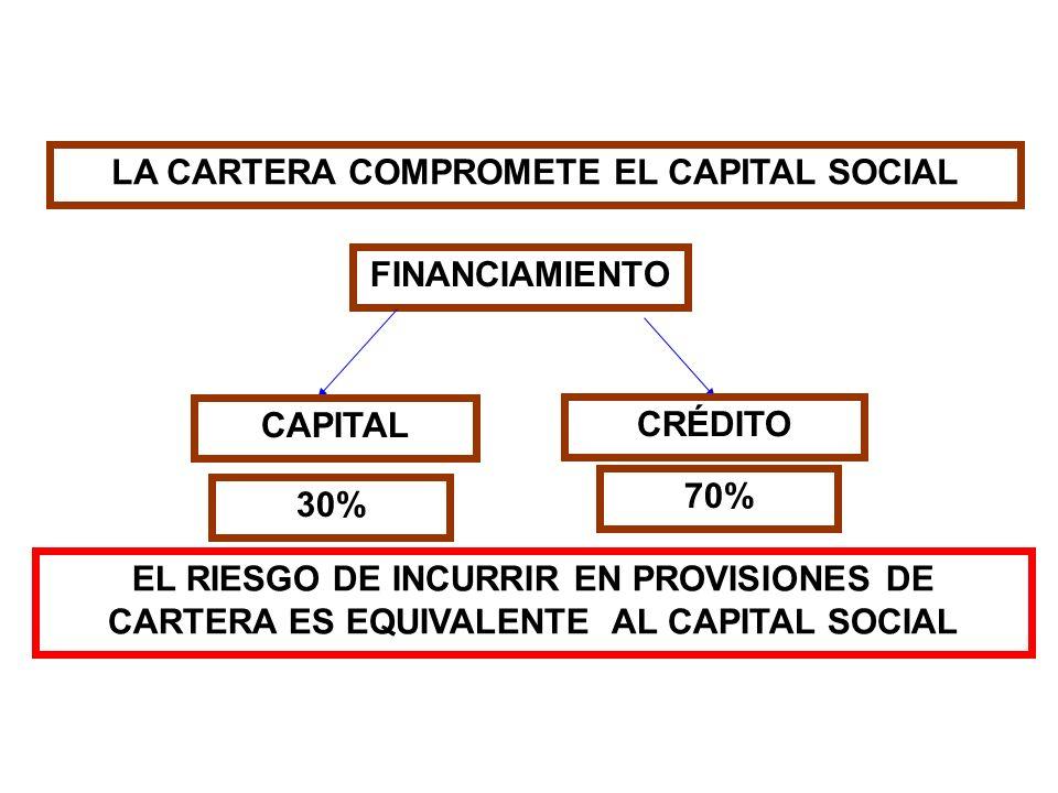 LA CARTERA COMPROMETE EL CAPITAL SOCIAL