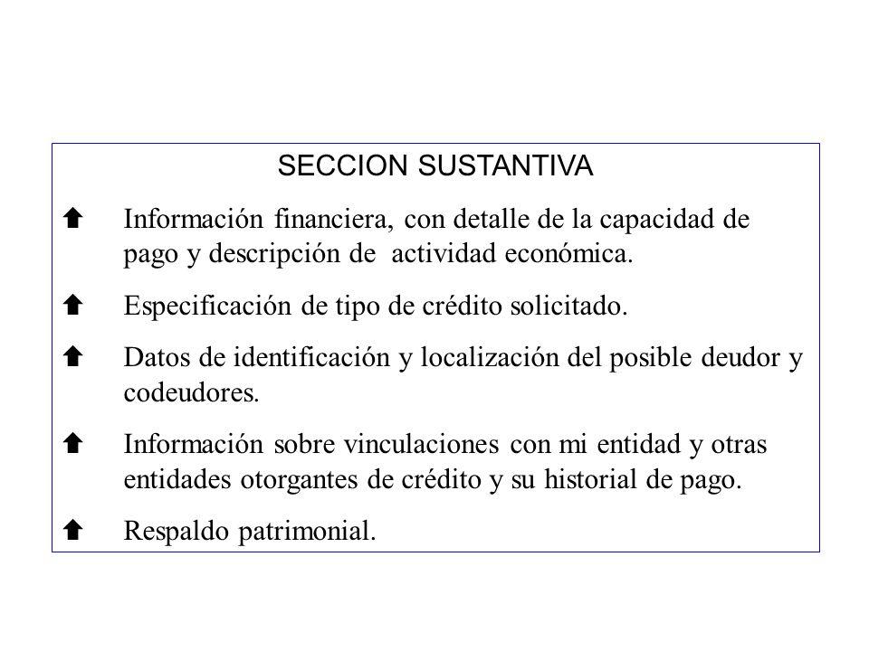SECCION SUSTANTIVA Información financiera, con detalle de la capacidad de pago y descripción de actividad económica.