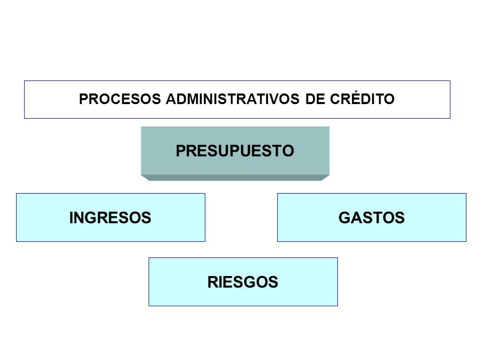 PROCESOS ADMINISTRATIVOS DE CRÉDITO