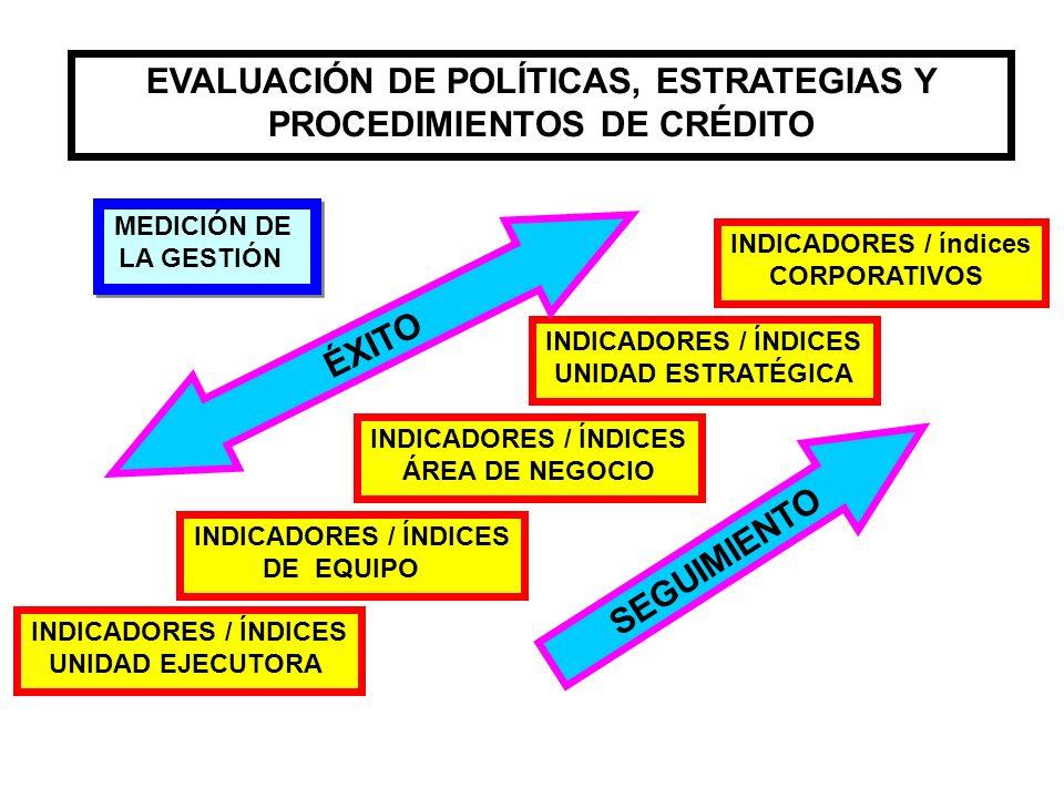 EVALUACIÓN DE POLÍTICAS, ESTRATEGIAS Y PROCEDIMIENTOS DE CRÉDITO