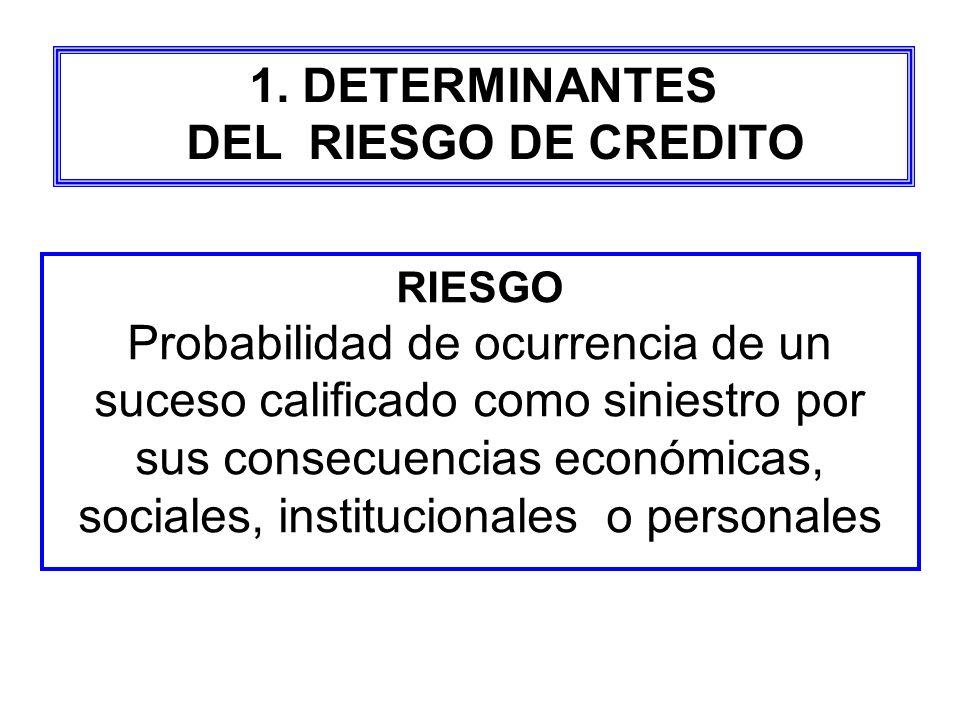 1. DETERMINANTES DEL RIESGO DE CREDITO