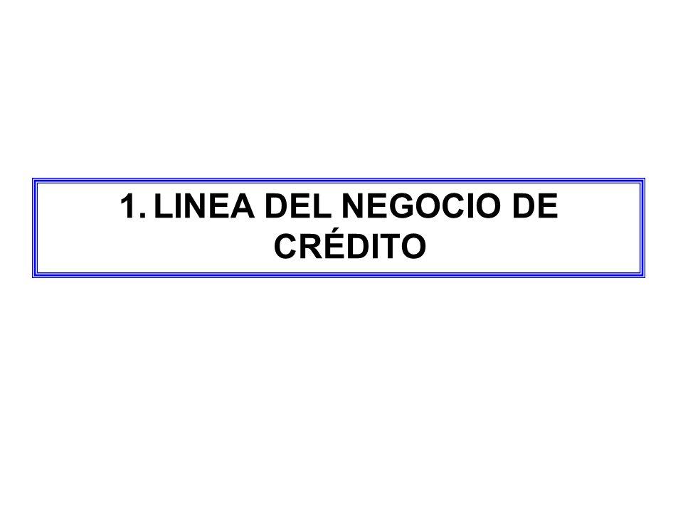 LINEA DEL NEGOCIO DE CRÉDITO