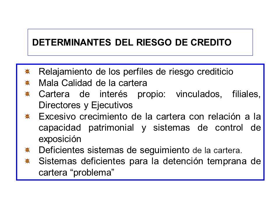 DETERMINANTES DEL RIESGO DE CREDITO