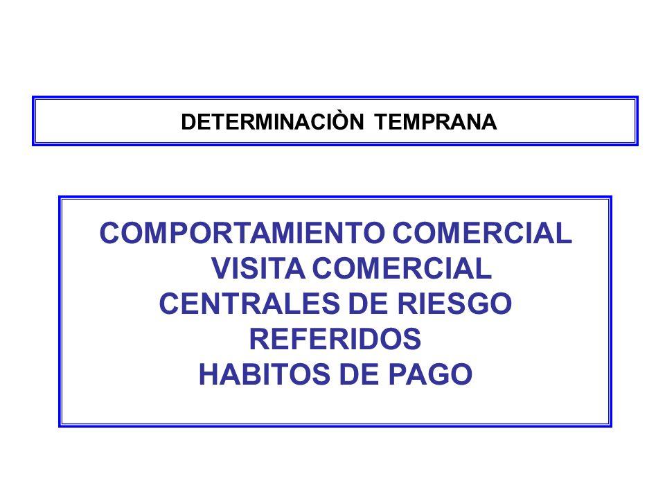 DETERMINACIÒN TEMPRANA COMPORTAMIENTO COMERCIAL VISITA COMERCIAL