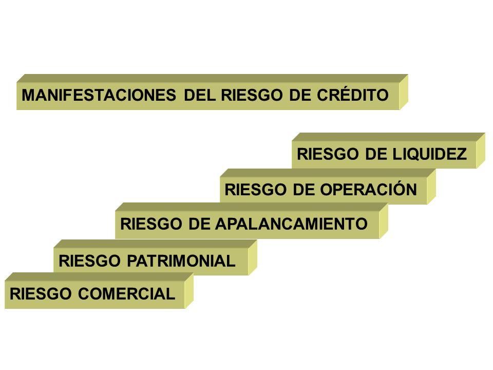 MANIFESTACIONES DEL RIESGO DE CRÉDITO