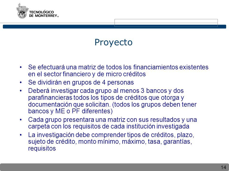 Proyecto Se efectuará una matriz de todos los financiamientos existentes en el sector financiero y de micro créditos.