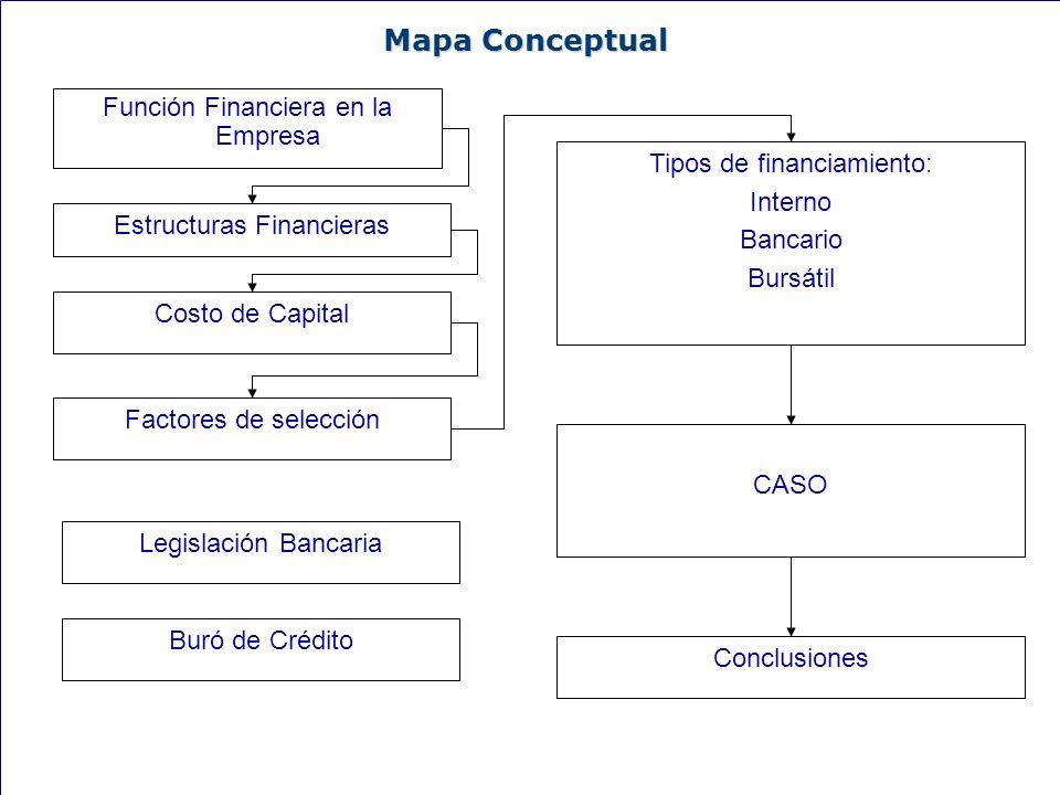 Mapa Conceptual Función Financiera en la Empresa