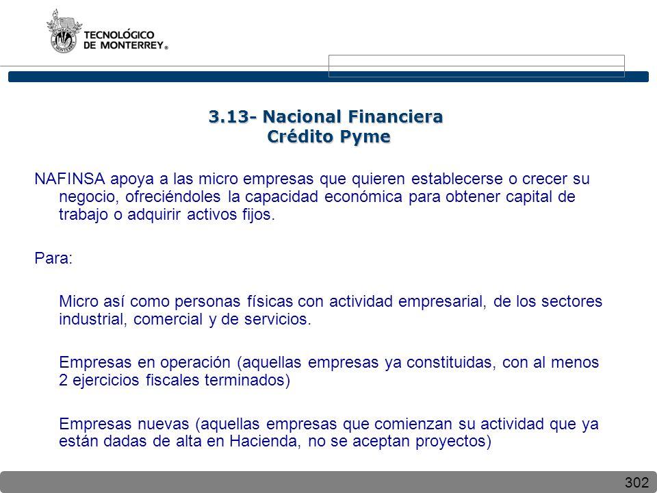 3.13- Nacional Financiera Crédito Pyme