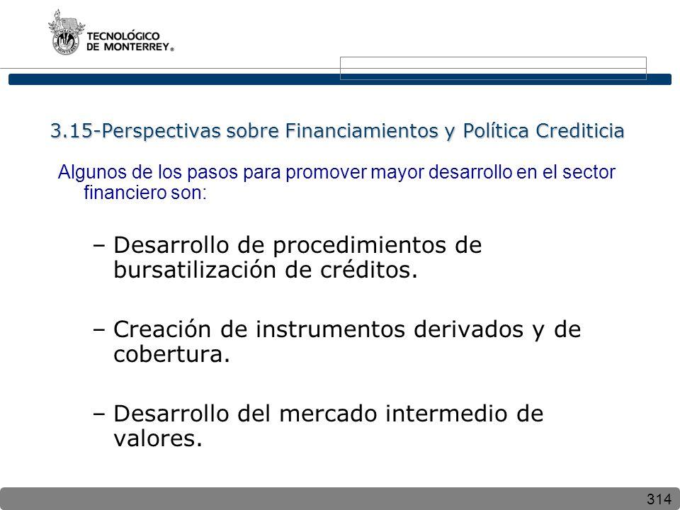 3.15-Perspectivas sobre Financiamientos y Política Crediticia